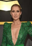 Céline Dion (Feb. 11, 2017 - Source: Alberto E. Rodriguez/Getty Images North America)