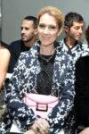 Céline Dion (July 3, 2016 - Source: Pascal Le Segretain/Getty Images Europe)